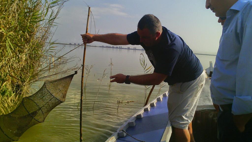 La ruta del arroz desde Israel a Valencia
