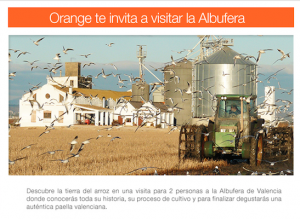 Arroz Tartana y Orange te llevan a visitar l'Albufera