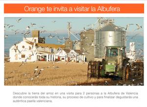 Arroz Tartana y Orange te llevan a visitar l'Albufera